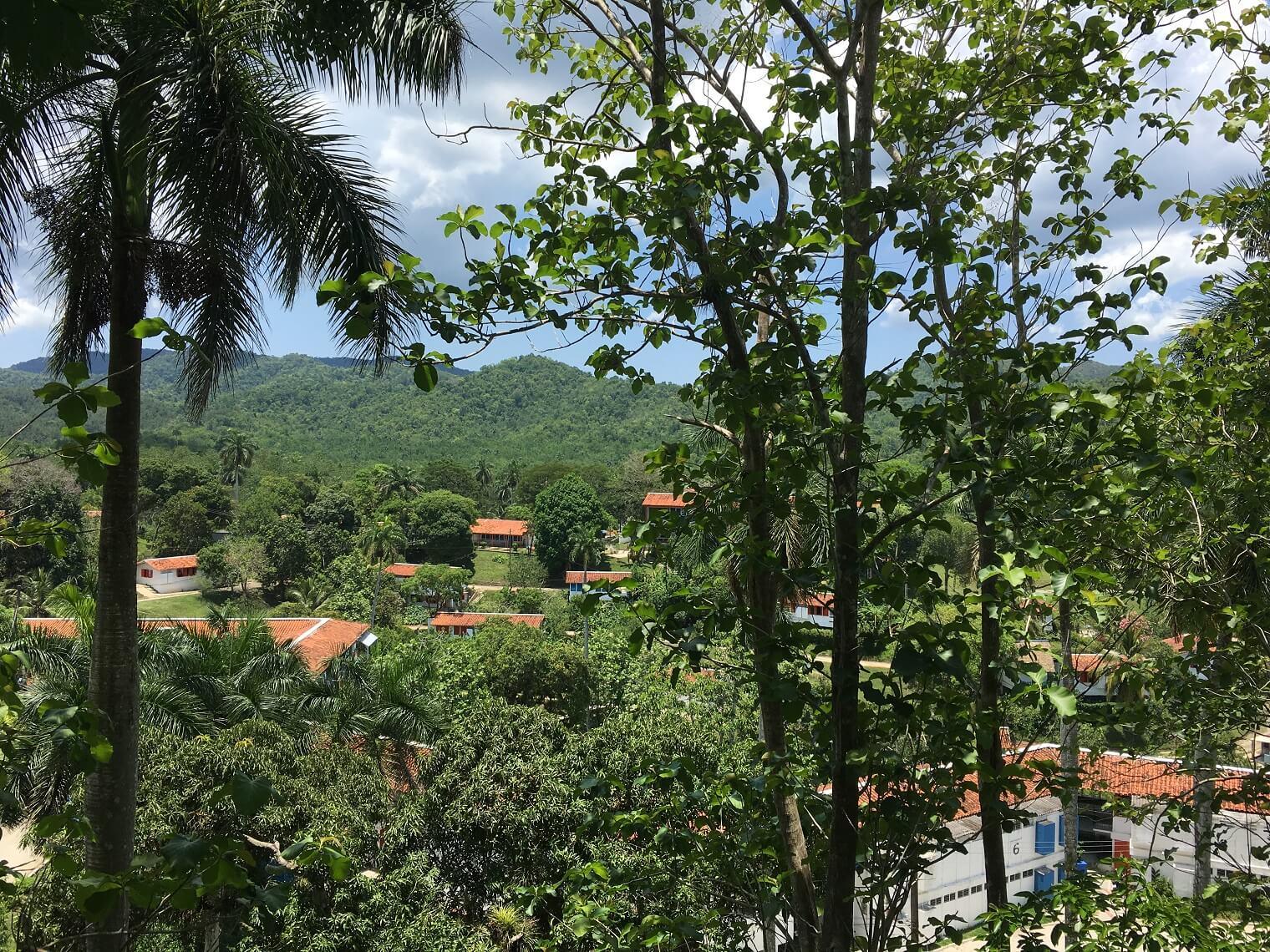 Beautiful forest view of Las Terrazas from the Hotel Moka balcony