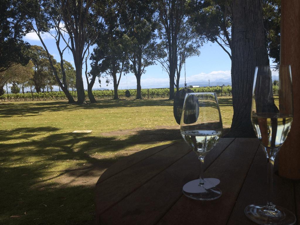 Marlborough wine region New Zealand