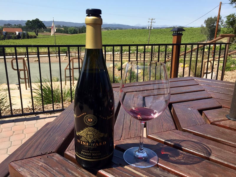 Paso Robles one of the great wine regions of the Americas