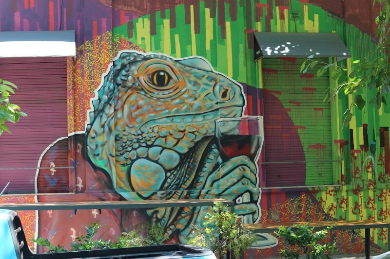 Mendoza is one of the best street art cities in South America. Example of Mendoza Street Art