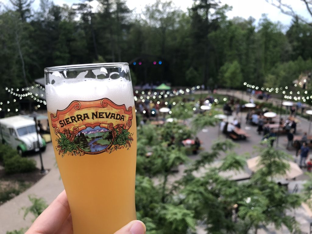 glass of beer in the foreground of a garden