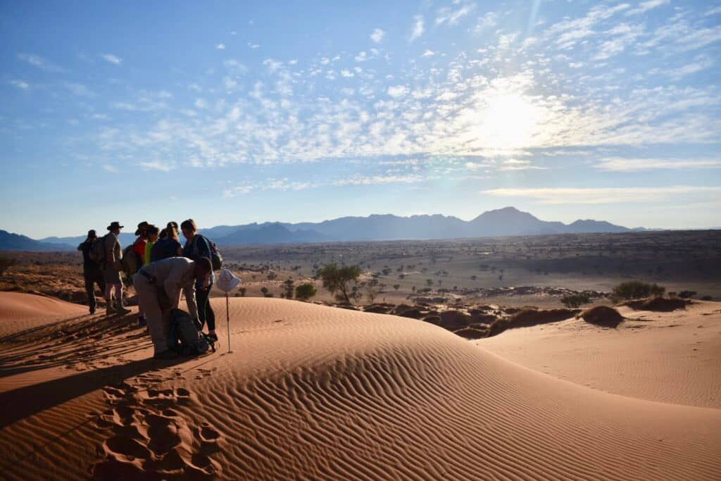 Group tours to Namibia are great