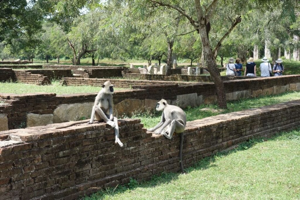 Anuradhapura, one of the best places to visit in Sri Lanka