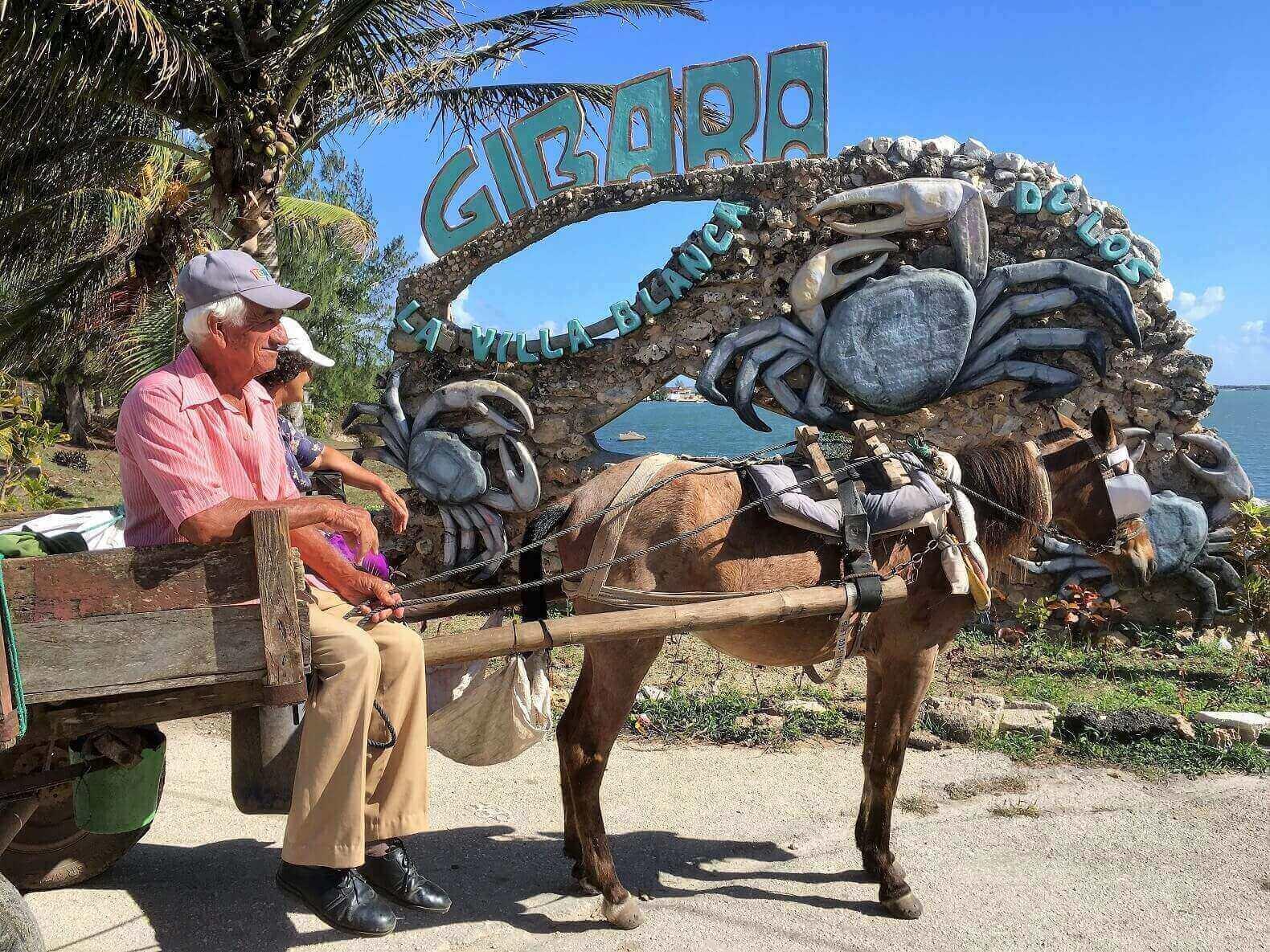 Horse and cart, Cuban transportation