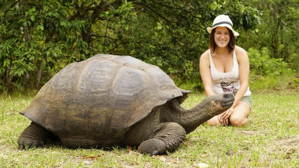 Travel Inspired by Books - Galapagos turtle in South America