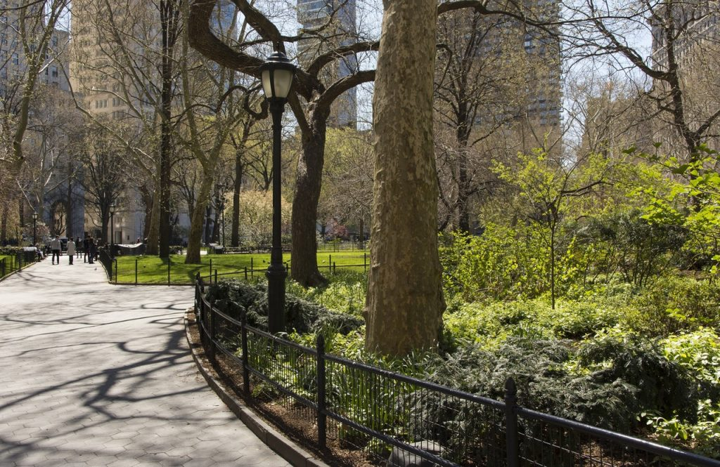 A NYC Walking Tour of Central Park