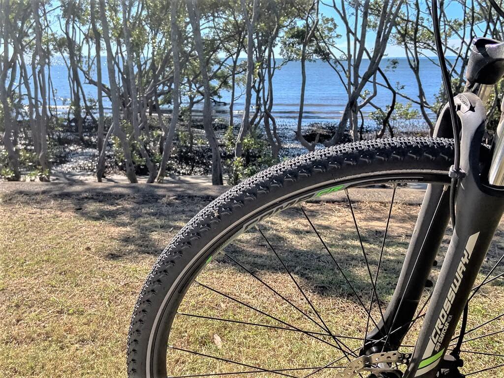 Bike tire in landscape