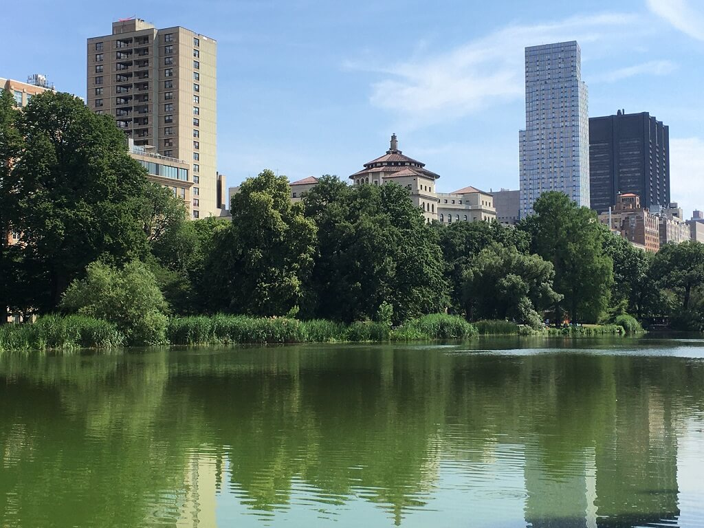 Uptown Central Park NYC