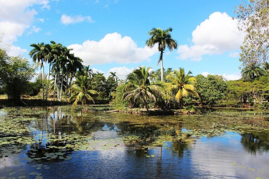 Cienega Zapata Nature reserve